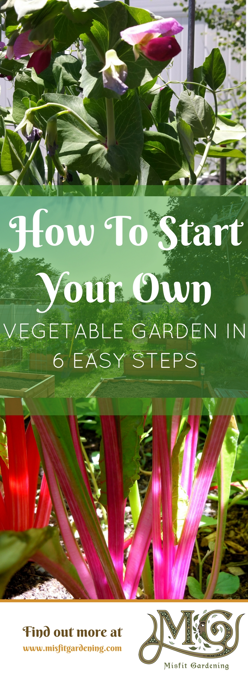 Find out how to start a vegetable garden from scratch and grow your very own vegetables in your for How to start a garden from scratch